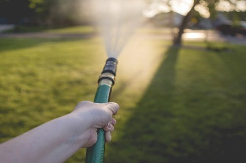 Watering Lawn In The Morning